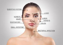 Acne Face Chart Chinese Face Mapping 16th Street Acupuncture
