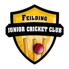 Junior Graphic Design Jobs Nz Professional Masculine Club Logo Design For Feilding