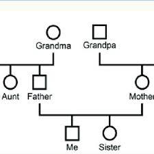 An Example Of A Genogram Download Scientific Diagram