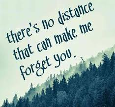 Quotes About Friendship Long Distance 100 Friendship Quotes Prove Distance Only Brings You Closer YourTango 34