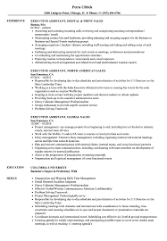 Executive Assistant Resume Sales Executive Assistant Resume Samples Velvet Jobs 39
