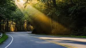 hd wallpaper road sun rays trees