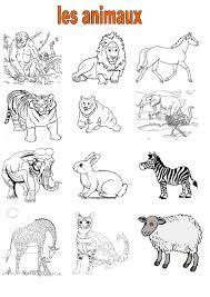 Vocabulaire 2 Ce Cm2 Imagiers Les Animaux La Ferme Lion Coloriage A Imprimer Imagier Des Animaux De La Banquise L
