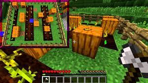Pompoen De Officiële Minecraft Wiki