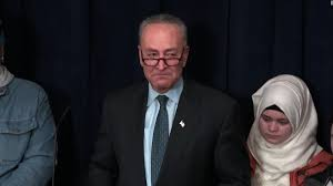 Image result for senator schumer