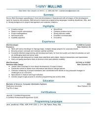 Web Designer Resume Template Unforgettable Web Developer Resume Examples To  Stand Out Ideas