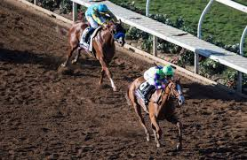 2017 Breeders Cup Charts 2018 Kentucky Derby Good Magic Pedigree Profile
