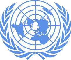 Image result for united nations high commissioner for human rights