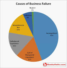 Why Do Small Businesses Fail Entrepreneurship Articles