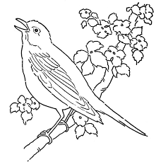 Bird Color Pages printable bird coloring pages coloring me on bird printable coloring sheet