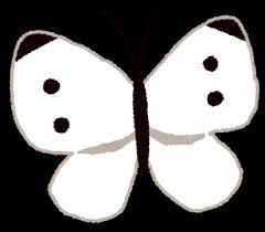 モンシロチョウのイラスト蝶 かわいいフリー素材集 いらすとや