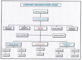 Company Organisation Chart Tvmc Llc