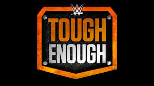 Image result for WWE drama