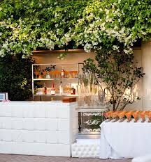 Outdoor wedding bar with ice luge