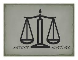 nature vs nurture essays frankenstein nature vs nurture essay