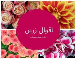 Urdu Aqwal E Zareen About Life Education Friendship Educatorsboard
