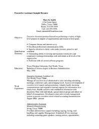 89 Sample Resume For Government Jobs Resume Objectives For