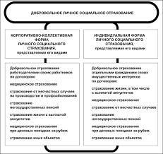 Реферат Социальное страхование в России com Банк  Социальное страхование в России