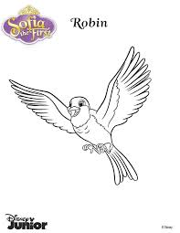 Small Picture 17 best sofia the first coloring page images on Pinterest Sofia