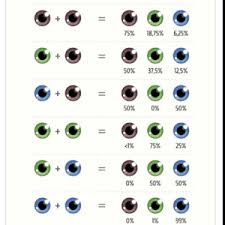 Eye Color Recessive Dominant Chart Eye Color Very Interesting July 2015 Babies Forums
