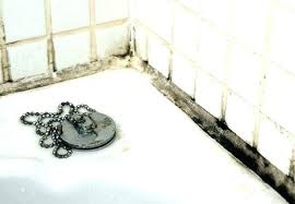 how to remove mold from bathroom mold in shower grout cleaning mold in shower black mold