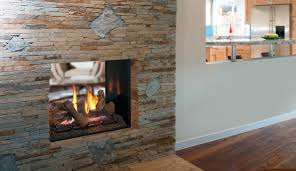drt63st 40 direct vent see through fireplace