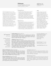 Resume Of Php Developer Resume Online Builder
