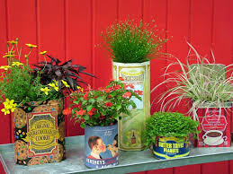 Wetting Your Plants