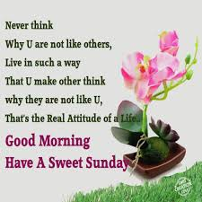 Special Good Morning Quotes Best of Motivational And Inspirational Quotes Good Morning Inspirational