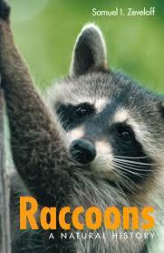 Raccoon Classification Chart Raccoons A Natural History Amazon Co Uk Samuel I