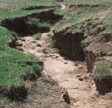 images?q=tbn:ANd9GcR8PtggZ BdqpYpBEtOF49  oQ1NXwxa6lY shbXoJc6HsRx1Yi - اثرات فعالیت های انسان در فرسایش خاک و غیره