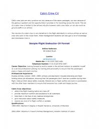 cabin crew cv all docs template cabin crew cv all docs