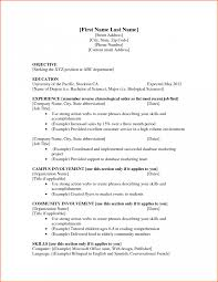 Resume Samples For Job Format Doc Examples Students 1161 Sevte