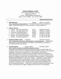 Self Employed Resume Template New Hbs Resume Template Curriculum Vitae Or Sample Cv And Self Cover