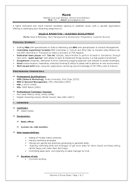 Resume Format For Experienced Professionals New No Work Experience