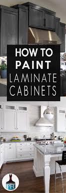 painting laminate kitchen cabinetsPainting Laminate Cabinets  Painted Furniture Ideas