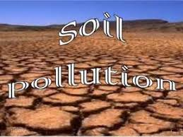 soil pollution essay soil pollution