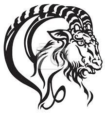Obraz Logo Kozorožec Vedoucí Mytologické Mořské Kozy Tribal Tetování