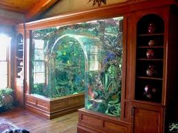 furniture aquarium. aquarium decorations ideas with natural nuance unique interior design pictures furniture