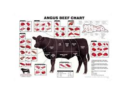Cow Meat Cut Chart Angus Beef Chart Meat Cuts Diagram Poster 24x36
