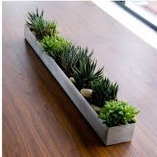 Rectangular indoor planter 1