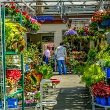 garden center nj. Photo Of Orange Garden Center - Orange, NJ, United States Nj M
