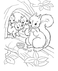 Small Picture Printable Squirrel Coloring Pages Animal Coloring pages of