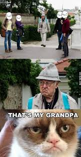 We wanted a picture with Grumpy Grandpa! | Animal Memes | We Heart It via Relatably.com