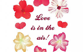 Love Is In The Air New Free Flower Vectors Vector Free Download Amazing Love Flower Photo Download