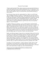 Example Of Example Essay Photo Essays Riverdale School District Argumentative Essay