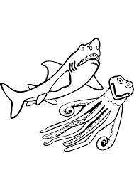 Dessins Colorier Coloriage Requin Imprimer Dessiner Est Un Jeu