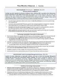 Sample Resume Project Manager It Manager Sample Resume Professional