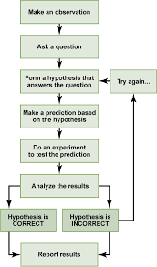 Scientific Method Chart Of Steps The Scientific Process Principles Of Biology Biology 211