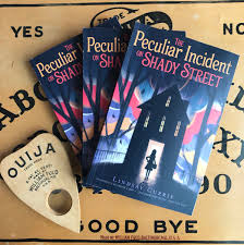 Image result for the peculiar incident on shady street